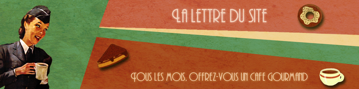 Newsletter du site
